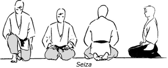 Seiza-vector
